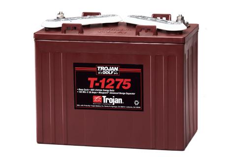 Powertron 6-Volt Golf Car Battery